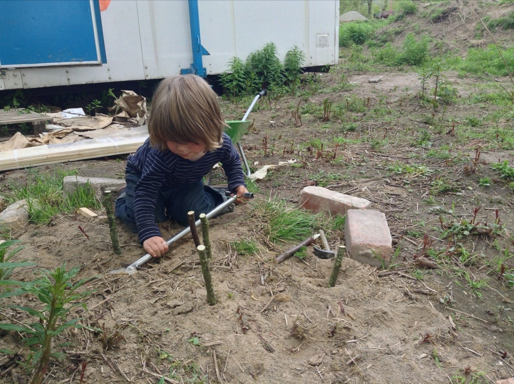 Coll sets out marking pins and digs foundations on Owl the Digga Man's building site.
